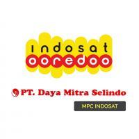 Logo PT. Daya Mitra Selindo